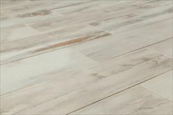 Kaska Italian Porcelain Tile - Petrified Wood Series