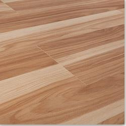 Eurafloor Laminate - 8mm Arboreal Collection
